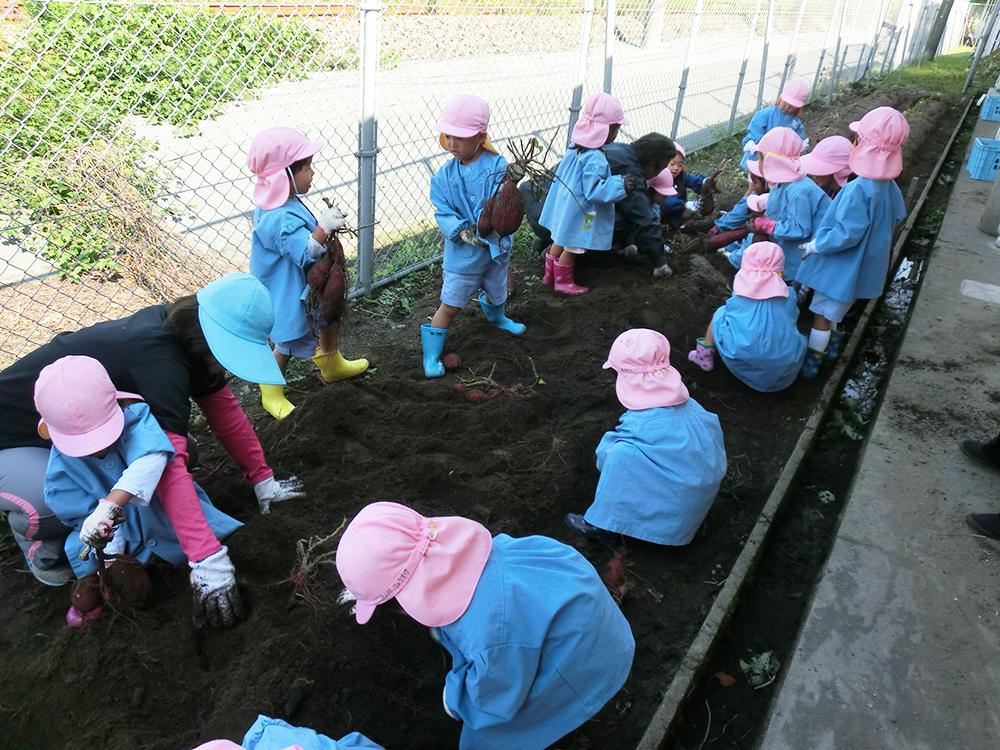 鹿児島第一幼稚園 10月